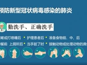 新型冠状病毒感染的肺炎防病科普(视频版)